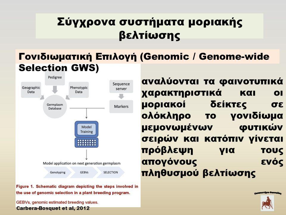 Σύγχρονα συστήματα μοριακής βελτίωσης Carbera-Bosquet et al, 2012 αναλύονται τα φαινοτυπικά χαρακτηριστικά και οι μοριακοί δείκτες σε ολόκληρο το γονιδίωμα μεμονωμένων φυτικών σειρών και κατόπιν γίνεται πρόβλεψη για τους απογόνους ενός πληθυσμού βελτίωσης Γονιδιωματική Eπιλογή (Genomic / Genome-wide Selection GWS)