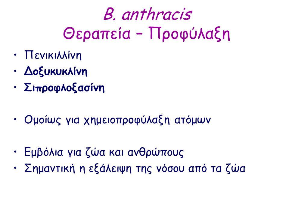 B. anthracis Θεραπεία – Προφύλαξη Πενικιλλίνη Δοξυκυκλίνη Σιπροφλοξασίνη Ομοίως για χημειοπροφύλαξη ατόμων Εμβόλια για ζώα και ανθρώπους Σημαντική η ε