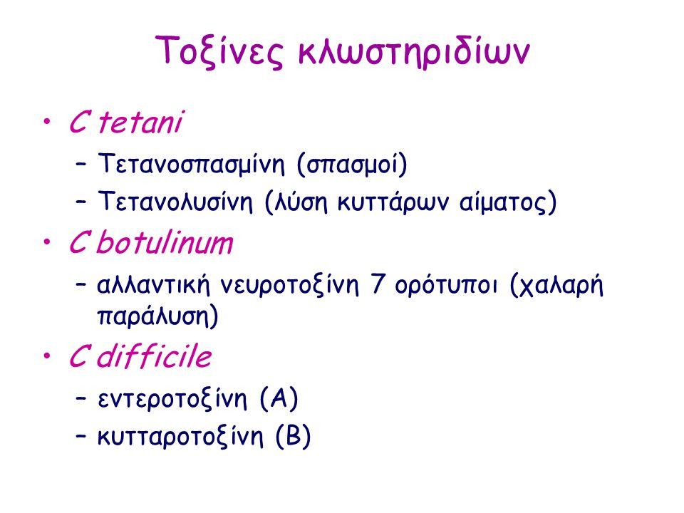 Τοξίνες κλωστηριδίων C tetani –Τετανοσπασμίνη (σπασμοί) –Τετανολυσίνη (λύση κυττάρων αίματος) C botulinum –αλλαντική νευροτοξίνη 7 ορότυποι (χαλαρή παράλυση) C difficile –εντεροτοξίνη (Α) –κυτταροτοξίνη (Β)