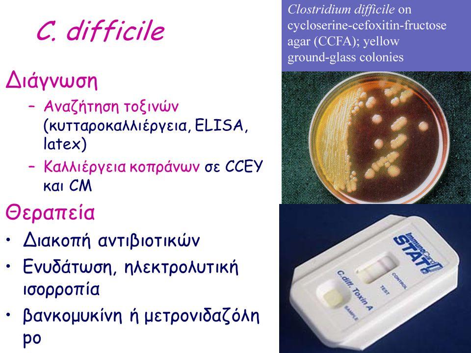 C. difficile Διάγνωση –Αναζήτηση τοξινών (κυτταροκαλλιέργεια, ΕLISA, latex) –Καλλιέργεια κοπράνων σε CCEY και CM Θεραπεία Διακοπή αντιβιοτικών Ενυδάτω