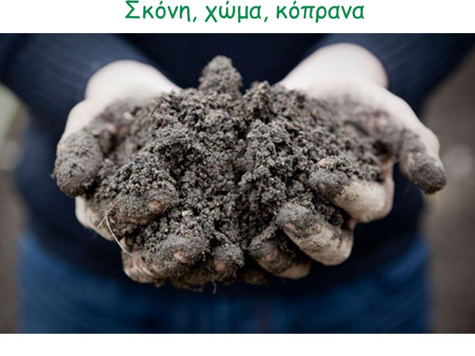 Σκόνη, χώμα, κόπρανα