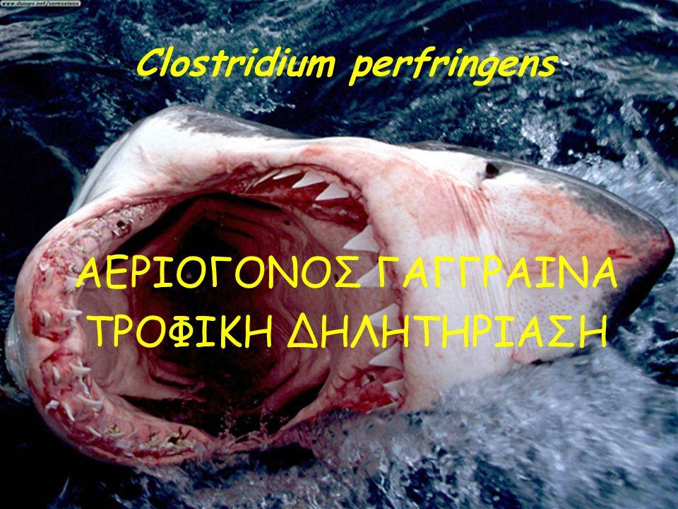 Clostridium perfringens ΑΕΡΙΟΓΟΝΟΣ ΓΑΓΓΡΑΙΝΑ ΤΡΟΦΙΚΗ ΔΗΛΗΤΗΡΙΑΣΗ