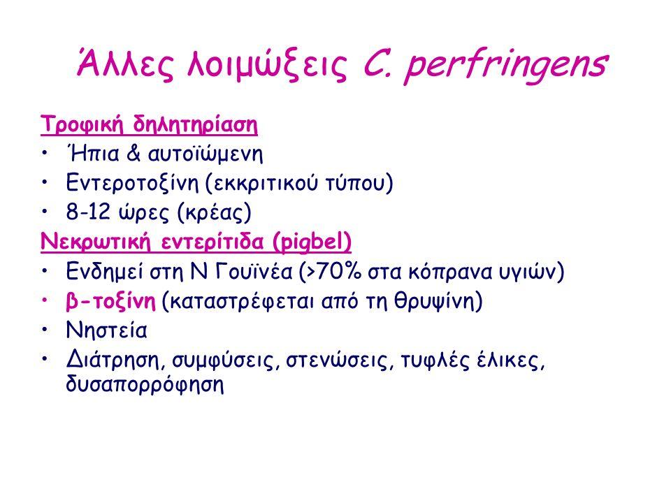 Άλλες λοιμώξεις C. perfringens Τροφική δηλητηρίαση Ήπια & αυτοϊώμενη Εντεροτοξίνη (εκκριτικού τύπου) 8-12 ώρες (κρέας) Nεκρωτική εντερίτιδα (pigbel) Ε