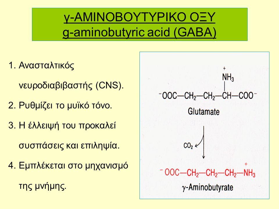 64 γ-AMINOBOYTYΡΙΚΟ ΟΞΥ g-aminobutyric acid (GABA) 1.Ανασταλτικός νευροδιαβιβαστής (CNS).