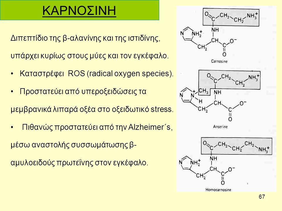 67 Διπεπτίδιο της β-αλανίνης και της ιστιδίνης, υπάρχει κυρίως στους μύες και τον εγκέφαλο.