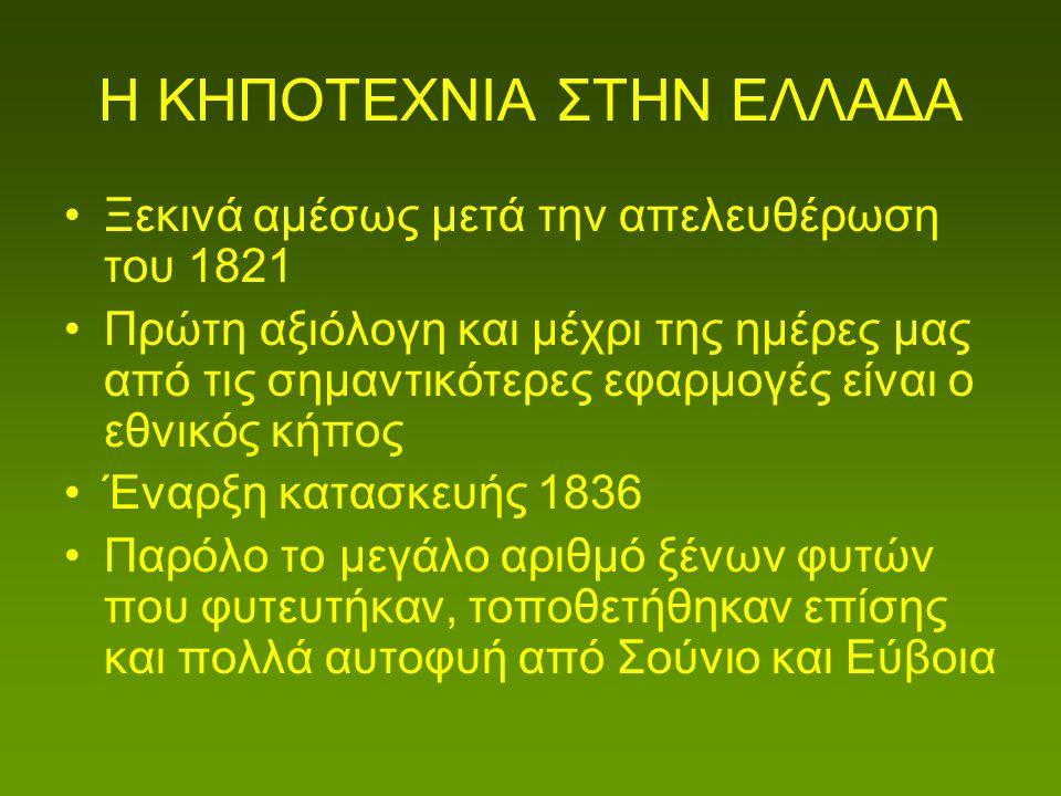 ΕΙΔΗ ΦΥΤΩΝ ΠΟΥ ΧΡΗΣΙΜΟΠΟΙΟΥΝΤΑΙ ΣΤΗΝ ΚΗΠΟΤΕΧΝΙΑ Πολλά λοιπόν είδη φυτών αυτοφυή στον Ελλαδικό χώρο (οπότε και Μεσογειακό) χρησιμοποιούνται εδώ και πολλά χρόνια στην κηποτεχνία στην Ελλάδα αλλά και στον υπόλοιπο κόσμο και θα ήταν ωφέλιμη η συνέχιση της χρήσης τους