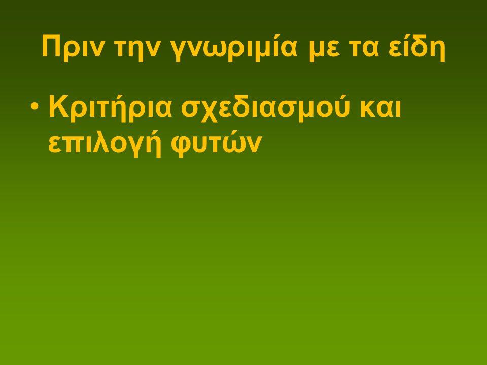 Thymelaea hirsuta