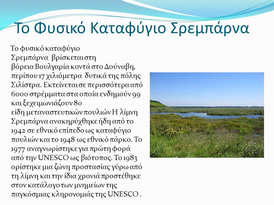 Το Φυσικό Καταφύγιο Σρεμπάρνα Το φυσικό καταφύγιο Σρεμπάρνα βρίσκεται στη βόρεια Βουλγαρία κοντά στο Δούναβη, περίπου 17 χιλιόμετρα δυτικά της πόλης Σιλίστρα.