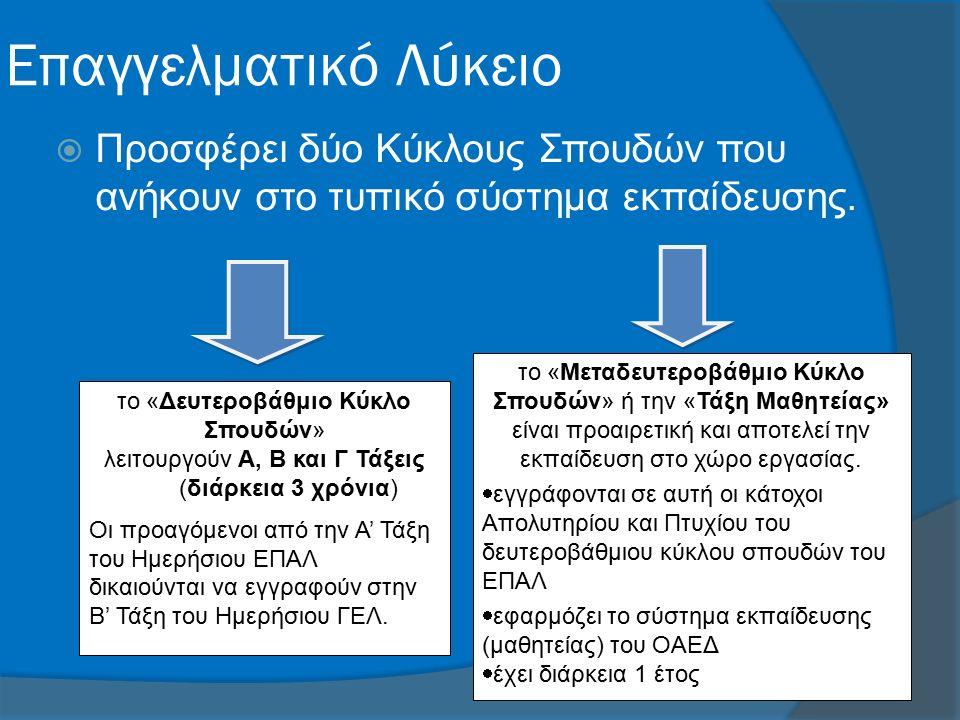Επαγγελματικό Λύκειο  Προσφέρει δύο Κύκλους Σπουδών που ανήκουν στο τυπικό σύστημα εκπαίδευσης.