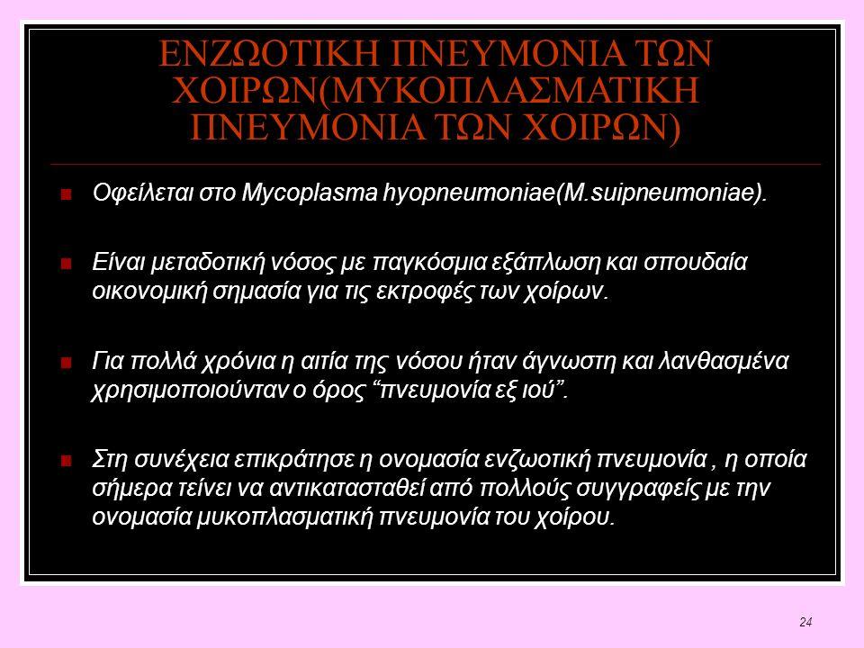 24 ΕΝΖΩΟΤΙΚΗ ΠΝΕΥΜΟΝΙΑ ΤΩΝ ΧΟΙΡΩΝ(ΜΥΚΟΠΛΑΣΜΑΤΙΚΗ ΠΝΕΥΜΟΝΙΑ ΤΩΝ ΧΟΙΡΩΝ) Οφείλεται στο Mycoplasma hyopneumoniae(M.suipneumoniae).