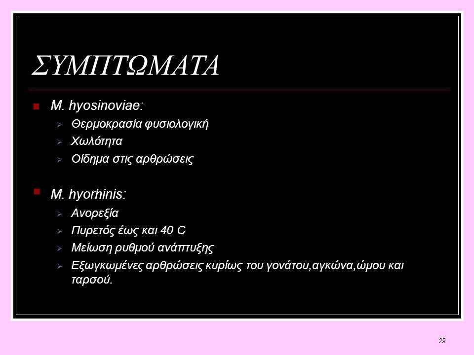 29 ΣΥΜΠΤΩΜΑΤΑ M. hyosinoviae:  Θερμοκρασία φυσιολογική  Χωλότητα  Οίδημα στις αρθρώσεις  M.