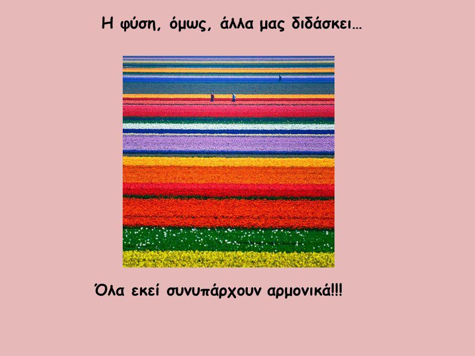 Η φύση, όμως, άλλα μας διδάσκει… Όλα εκεί συνυπάρχουν αρμονικά!!!