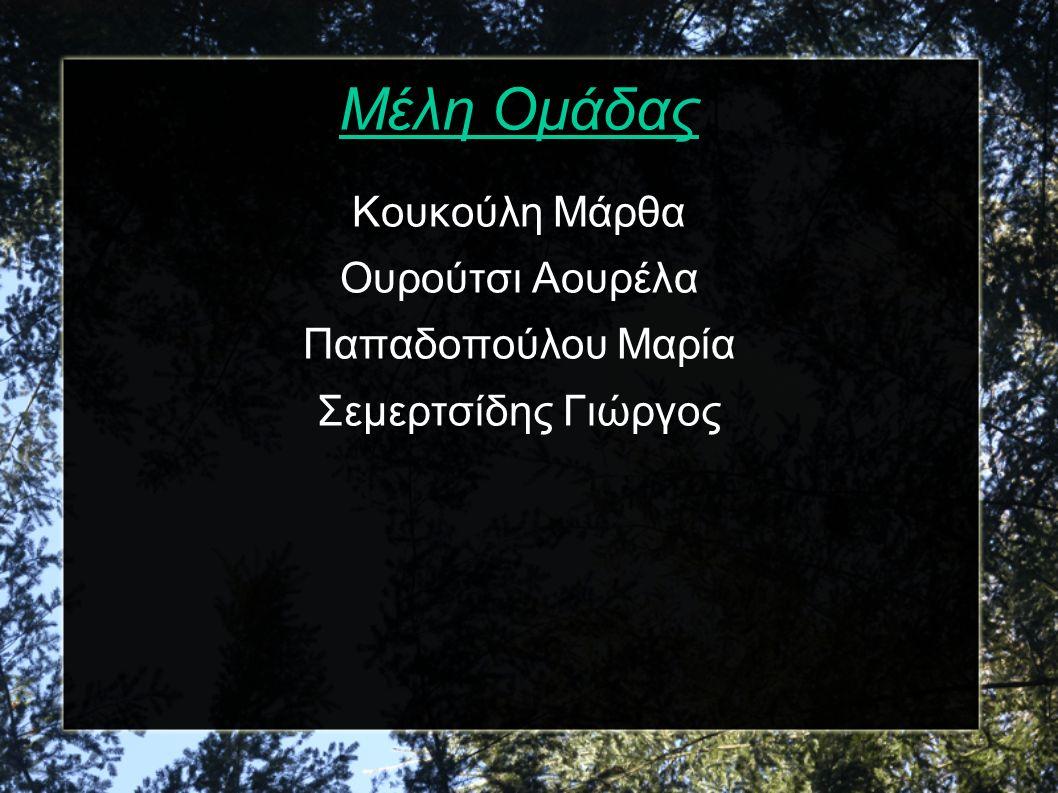 Μέλη Ομάδας Κουκούλη Μάρθα Ουρούτσι Αουρέλα Παπαδοπούλου Μαρία Σεμερτσίδης Γιώργος