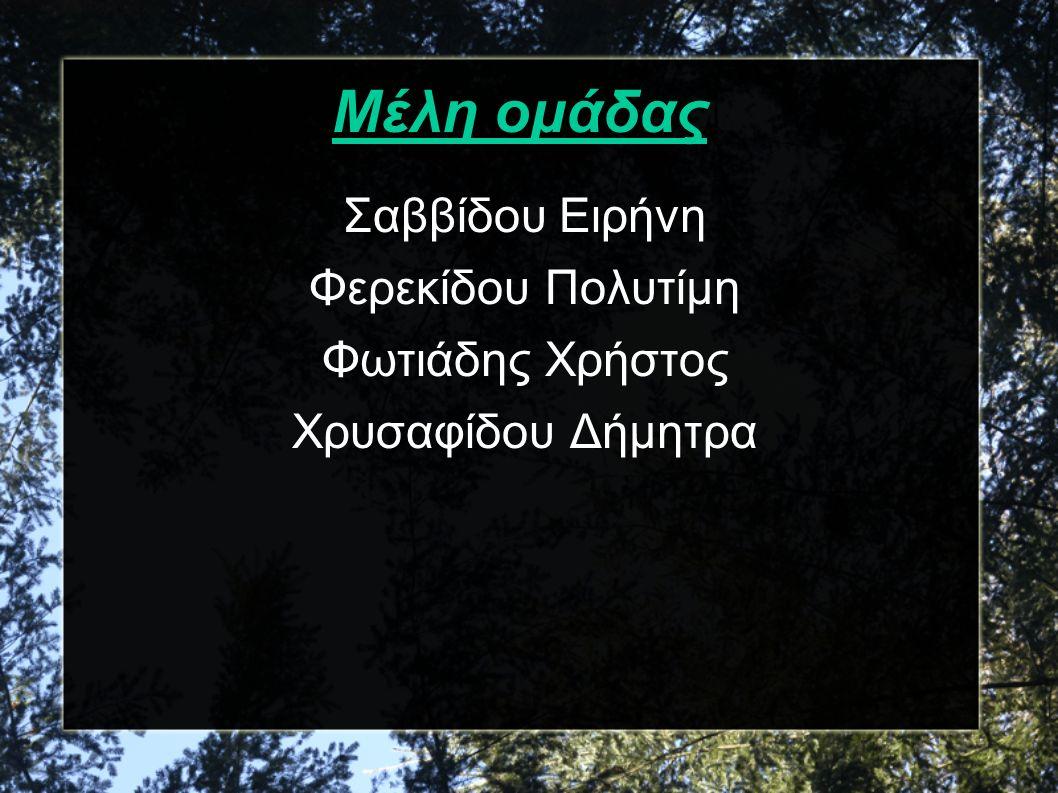 Μέλη ομάδας Σαββίδου Ειρήνη Φερεκίδου Πολυτίμη Φωτιάδης Χρήστος Χρυσαφίδου Δήμητρα