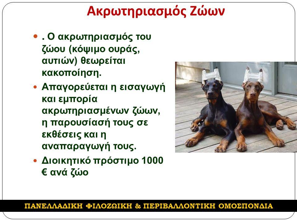 Ακρωτηριασμός Ζώων. Ο ακρωτηριασμός του ζώου (κόψιμο ουράς, αυτιών) θεωρείται κακοποίηση.
