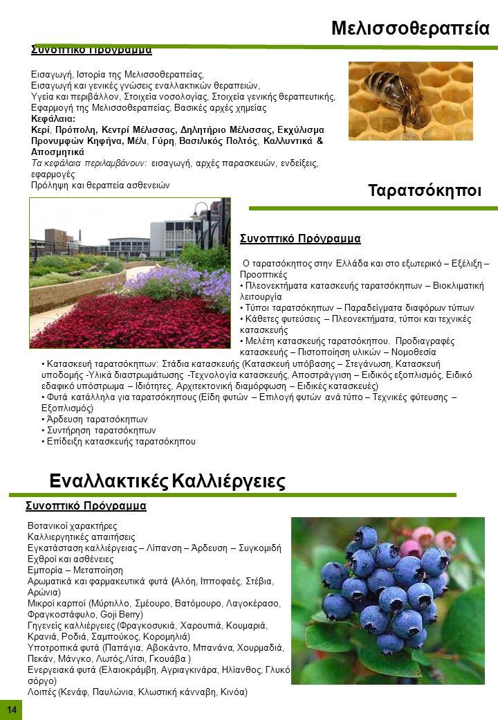 Συνοπτικό Πρόγραμμα Ο ταρατσόκηπος στην Ελλάδα και στο εξωτερικό – Εξέλιξη – Προοπτικές Πλεονεκτήματα κατασκευής ταρατσόκηπων – Βιοκλιματική λειτουργία Τύποι ταρατσόκηπων – Παραδείγματα διαφόρων τύπων Κάθετες φυτεύσεις – Πλεονεκτήματα, τύποι και τεχνικές κατασκευής Μελέτη κατασκευής ταρατσόκηπου.