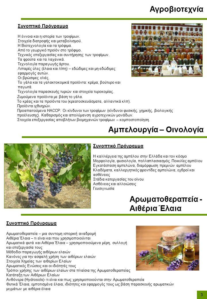 Συνοπτικό Πρόγραμμα Η έννοια και η ιστορία των τροφίμων.