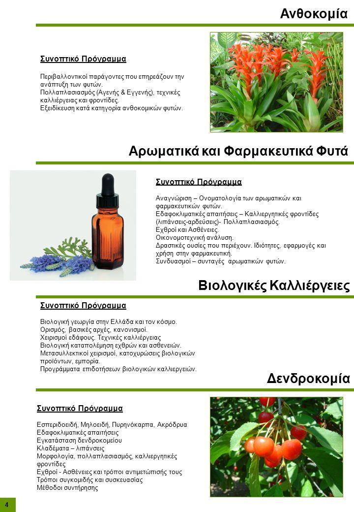 Συνοπτικό Πρόγραμμα Περιβαλλοντικοί παράγοντες που επηρεάζουν την ανάπτυξη των φυτών.