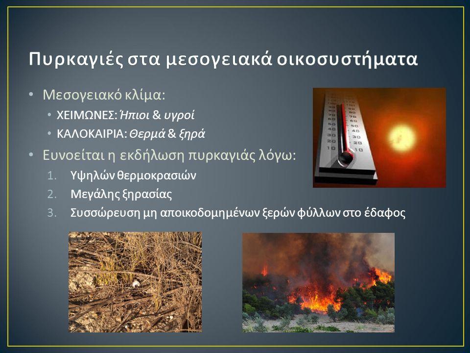 Μεσογειακό κλίμα : ΧΕΙΜΩΝΕΣ : Ήπιοι & υγροί ΚΑΛΟΚΑΙΡΙΑ : Θερμά & ξηρά Ευνοείται η εκδήλωση πυρκαγιάς λόγω : 1.Υψηλών θερμοκρασιών 2.Μεγάλης ξηρασίας 3.Συσσώρευση μη αποικοδομημένων ξερών φύλλων στο έδαφος