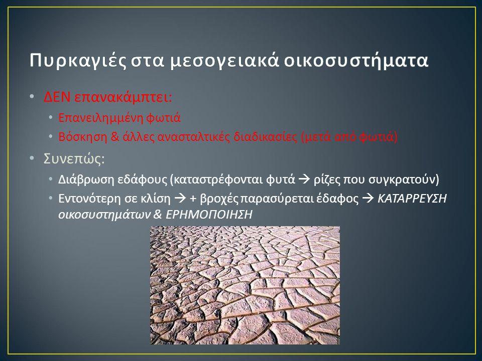 ΔΕΝ επανακάμπτει : Επανειλημμένη φωτιά Βόσκηση & άλλες ανασταλτικές διαδικασίες ( μετά από φωτιά ) Συνεπώς : Διάβρωση εδάφους ( καταστρέφονται φυτά  ρίζες που συγκρατούν ) Εντονότερη σε κλίση  + βροχές παρασύρεται έδαφος  ΚΑΤΑΡΡΕΥΣΗ οικοσυστημάτων & ΕΡΗΜΟΠΟΙΗΣΗ