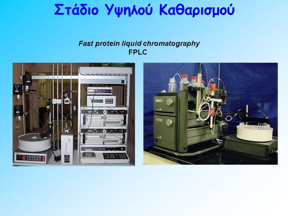 Στάδιο Υψηλού Καθαρισμού Fast protein liquid chromatography FPLC