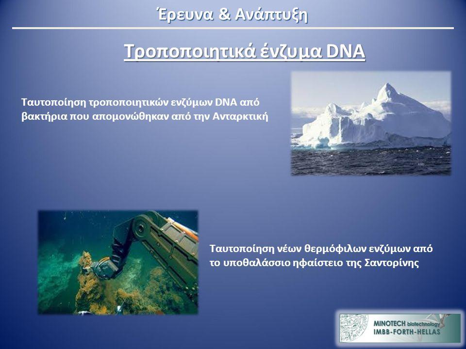 Τροποποιητικά ένζυμα DNA Ταυτοποίηση τροποποιητικών ενζύμων DNA από βακτήρια που απομονώθηκαν από την Ανταρκτική Ταυτοποίηση νέων θερμόφιλων ενζύμων από το υποθαλάσσιο ηφαίστειο της Σαντορίνης Έρευνα & Ανάπτυξη