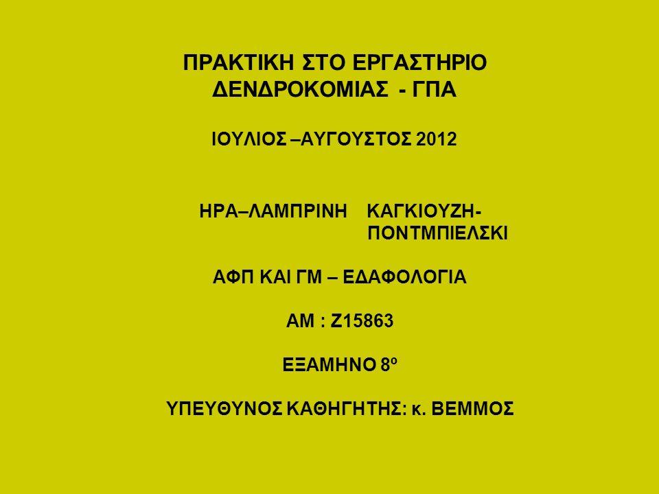 ΠΡΑΚΤΙΚΗ ΣΤΟ ΕΡΓΑΣΤΗΡΙΟ ΔΕΝΔΡΟΚΟΜΙΑΣ - ΓΠΑ ΙΟΥΛΙΟΣ –ΑΥΓΟΥΣΤΟΣ 2012 ΗΡΑ–ΛΑΜΠΡΙΝΗ ΚΑΓΚΙΟΥΖΗ- ΠΟΝΤΜΠΙΕΛΣΚΙ ΑΦΠ ΚΑΙ ΓΜ – ΕΔΑΦΟΛΟΓΙΑ ΑΜ : Ζ15863 ΕΞΑΜΗΝΟ 8º ΥΠΕΥΘΥΝΟΣ ΚΑΘΗΓΗΤΗΣ: κ.