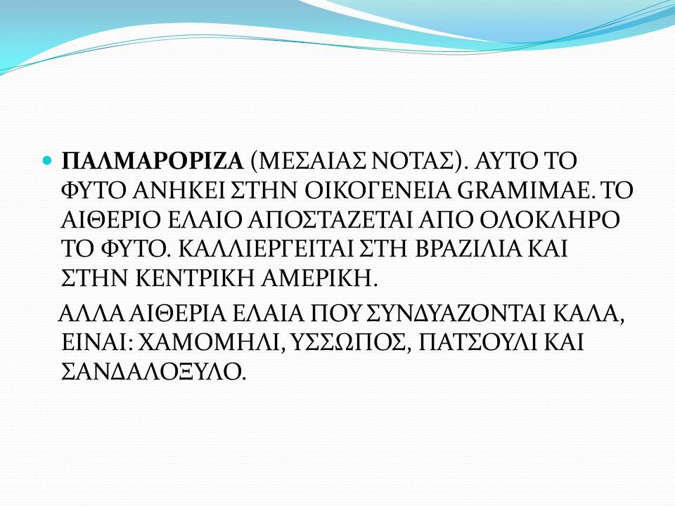 ΠΑΛΜΑΡΟΡΙΖΑ (ΜΕΣΑΙΑΣ ΝΟΤΑΣ). ΑΥΤΟ ΤΟ ΦΥΤΟ ΑΝΗΚΕΙ ΣΤΗΝ ΟΙΚΟΓΕΝΕΙΑ GRAMIMAE. ΤΟ ΑΙΘΕΡΙΟ ΕΛΑΙΟ ΑΠΟΣΤΑΖΕΤΑΙ ΑΠΟ ΟΛΟΚΛΗΡΟ ΤΟ ΦΥΤΟ. ΚΑΛΛΙΕΡΓΕΙΤΑΙ ΣΤΗ ΒΡΑΖΙΛ