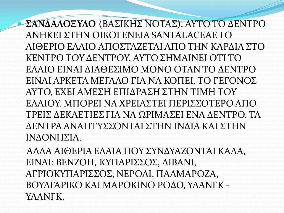 ΣΑΝΔΑΛΟΞΥΛΟ (ΒΑΣΙΚΗΣ ΝΟΤΑΣ).