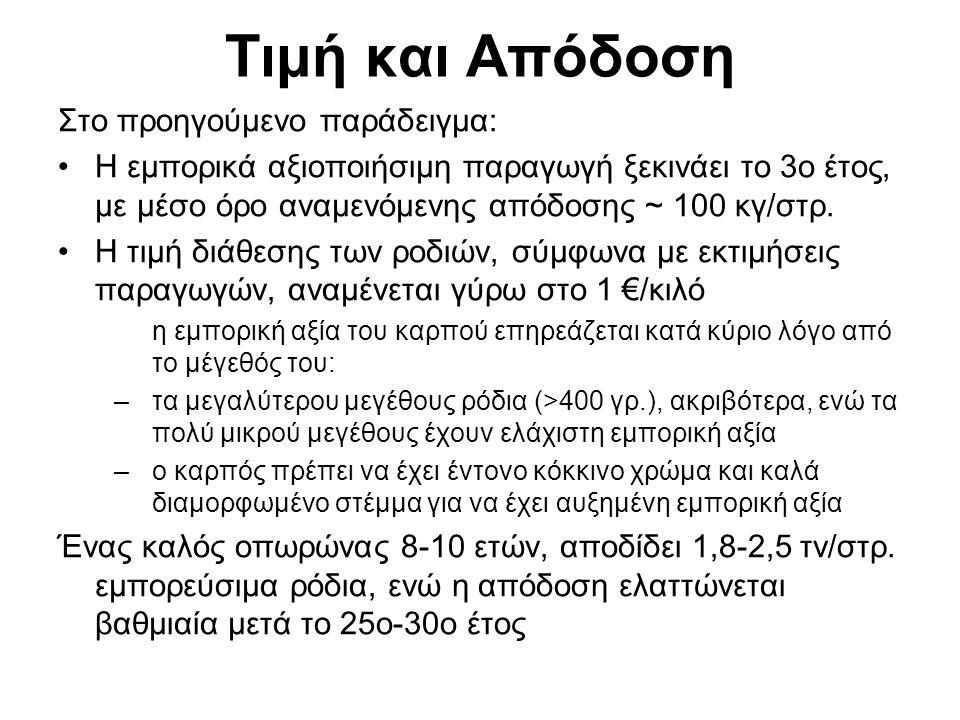 Προοπτικές Καλλιέργειας Θετικοί Παράγοντες Ελλειμματικό προϊόν σε ελληνική και διεθνή αγορά Στο επίκεντρο της προσοχής σε πολλές χώρες («σούπερ» τροφή) Πολλά νέα προϊόντα με βάση το ρόδι εμφανίζονται συνεχώς στη διεθνή και στην εγχώρια αγορά Έλληνες καταναλωτές + ντόπια προϊόντα >> εισαγόμενα Καταναλωτές + προϊόντα υψηλής θρεπτικής αξίας Οι κλιματικές συνθήκες της Ελλάδας φαίνεται να είναι ευνοϊκές για την ανάπτυξη της καλλιέργειας