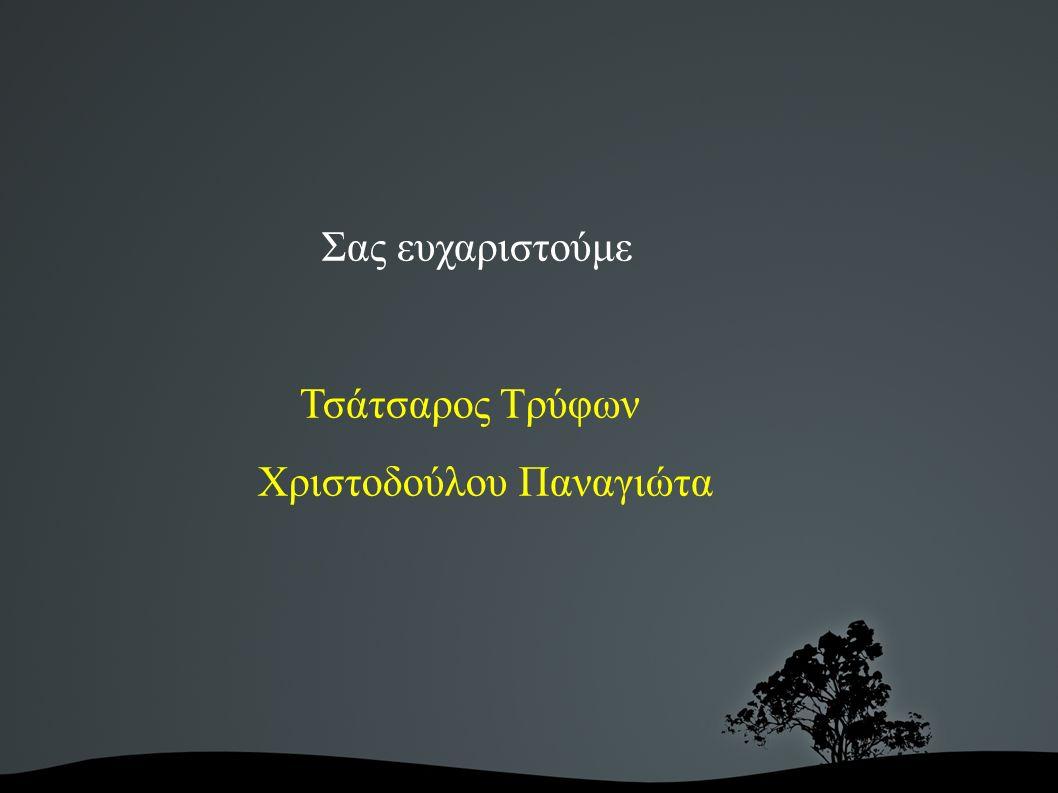 Σας ευχαριστούμε Τσάτσαρος Τρύφων Χριστοδούλου Παναγιώτα