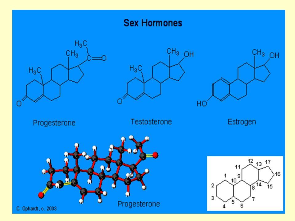 8 Τα αναβολικά ανδρογόνα στεροειδή είναι ανάλογα της τεστοστερόνης (ορμόνη του άρρενος) και έχουν αναβολικές και ανδρογόνες (αρρενοποίηση) ιδιότητες.