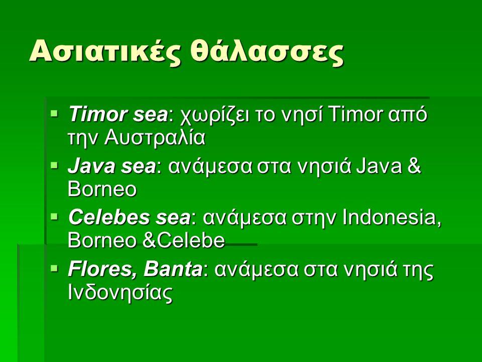 Ασιατικές θάλασσες  Timor sea: χωρίζει το νησί Timor από την Αυστραλία  Java sea: ανάμεσα στα νησιά Java & Borneo  Celebes sea: ανάμεσα στην Indonesia, Borneo &Celebe  Flores, Banta: ανάμεσα στα νησιά της Ινδονησίας