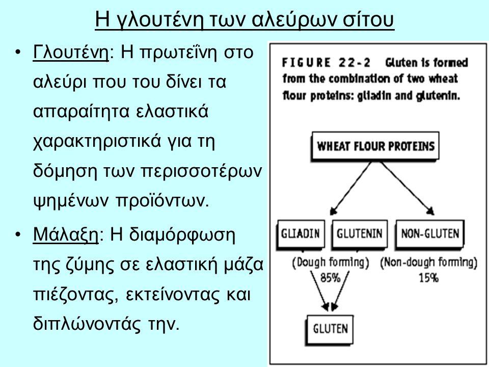 30 Η γλουτένη των αλεύρων σίτου Γλουτένη: Η πρωτεΐνη στο αλεύρι που του δίνει τα απαραίτητα ελαστικά χαρακτηριστικά για τη δόμηση των περισσοτέρων ψημ