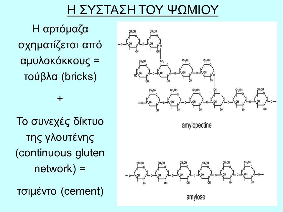 40 Μετά το ψήσιμο το άμυλο έχει μία άμορφη δομή αλλά όπως κρυώνει αποκτά μία κρυσταλλική μορφή και σκληραίνει (amorphous structure  crystalline structure  hardness).