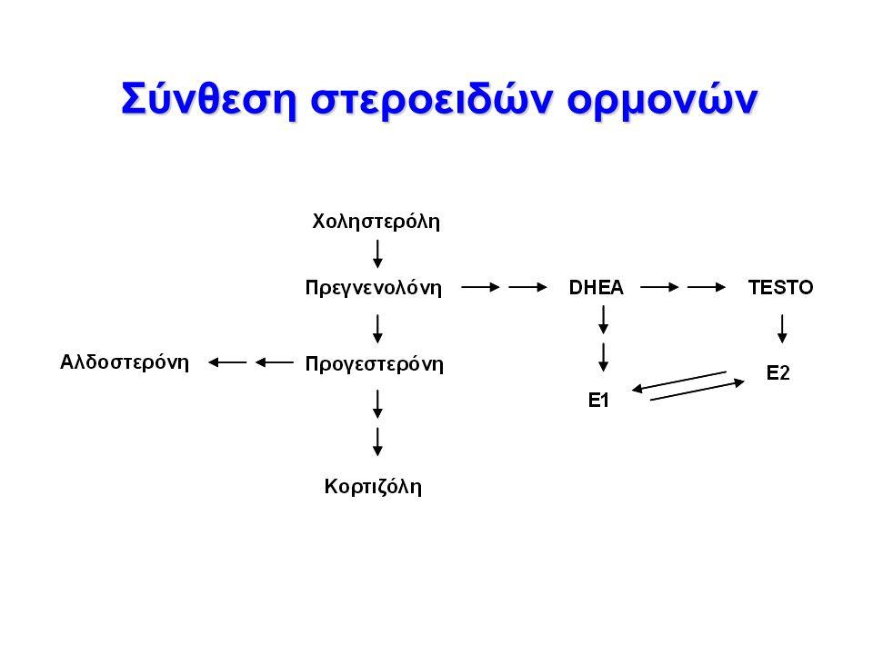 Σύνθεση στεροειδών ορμονών