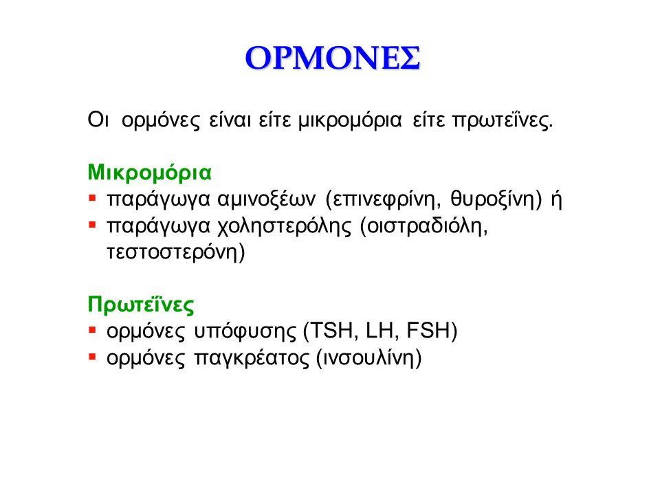 ΟΡΜΟΝΕΣ Οι ορμόνες είναι είτε μικρομόρια είτε πρωτεΐνες. Μικρομόρια  παράγωγα αμινοξέων (επινεφρίνη, θυροξίνη) ή  παράγωγα χοληστερόλης (οιστραδιόλη