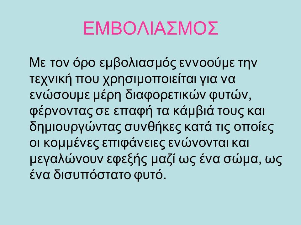 ΔΕΣΙΜΟ ΕΜΒΟΛΙΟΥ- ΥΠΟΚΕΙΜΕΝΟΥ