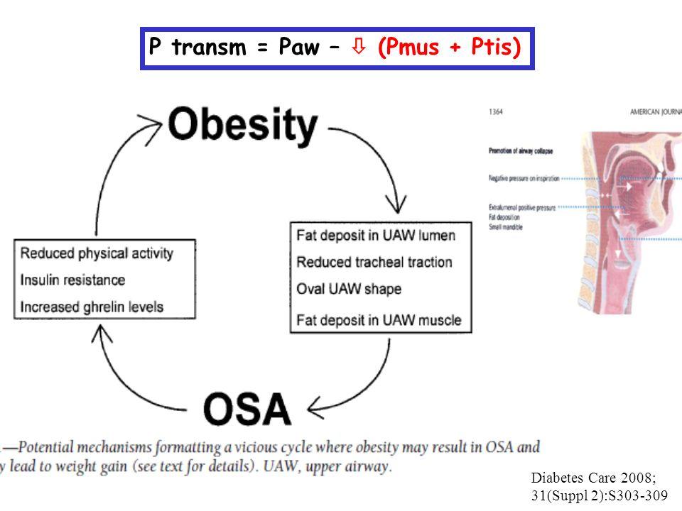 Diabetes Care 2008; 31(Suppl 2):S303-309 P transm = Paw –  (Pmus + Ptis)