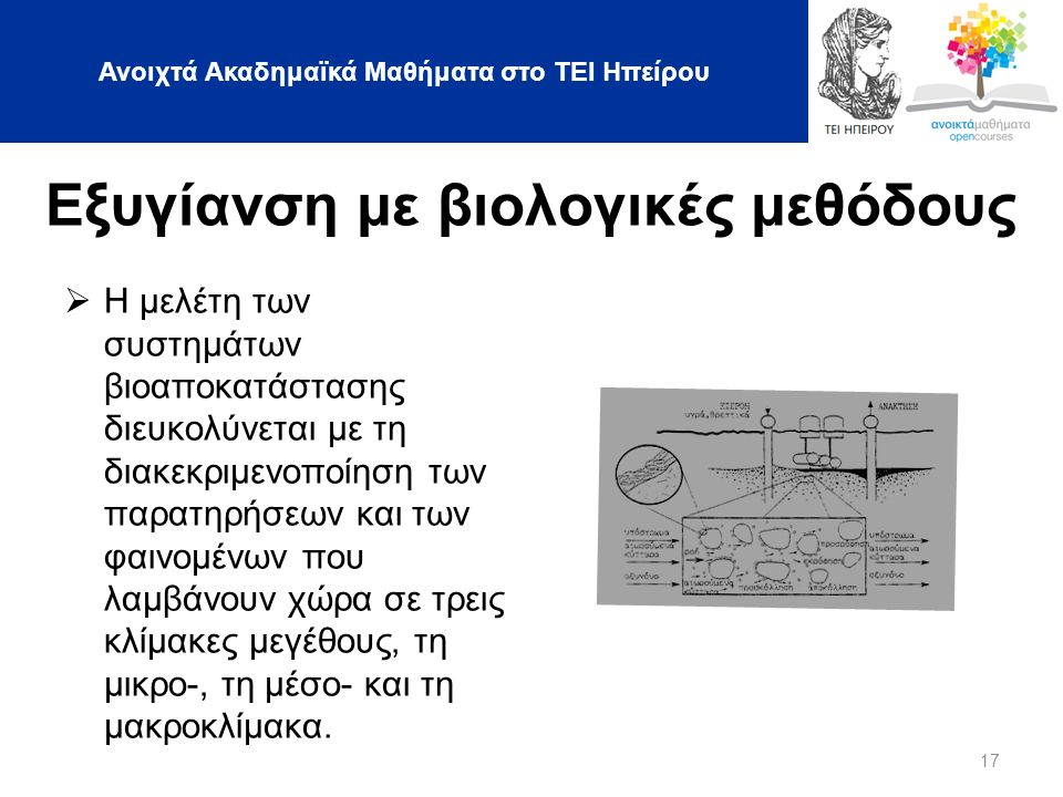 Ανοιχτά Ακαδημαϊκά Μαθήματα στο ΤΕΙ Ηπείρου 17 Εξυγίανση με βιολογικές μεθόδους  Η μελέτη των συστημάτων βιοαποκατάστασης διευκολύνεται με τη διακεκριμενοποίηση των παρατηρήσεων και των φαινομένων που λαμβάνουν χώρα σε τρεις κλίμακες μεγέθους, τη μικρο-, τη μέσο- και τη μακροκλίμακα.