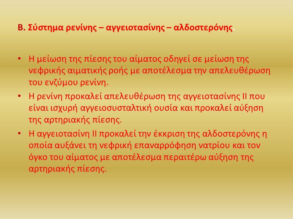 Β. Σύστημα ρενίνης – αγγειοτασίνης – αλδοστερόνης.
