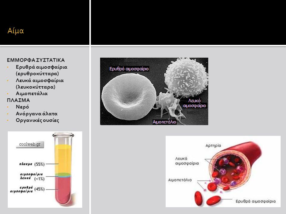 Αίμα ΕΜΜΟΡΦΑ ΣΥΣΤΑΤΙΚΑ Ερυθρά αιμοσφαίρια (ερυθροκύτταρα) Λευκά αιμοσφαίρια (λευκοκύτταρα) Αιμοπετάλια ΠΛΑΣΜΑ Νερό Ανόργανα άλατα Οργανικές ουσίες