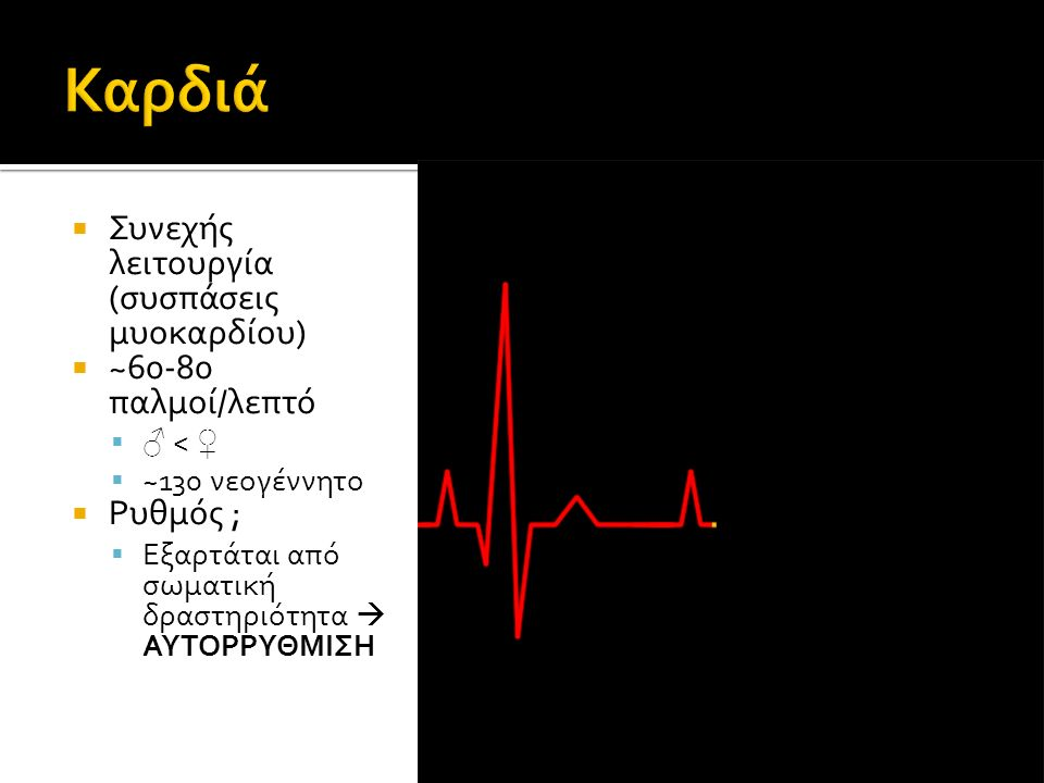  Συνεχής λειτουργία (συσπάσεις μυοκαρδίου)  ~60-80 παλμοί/λεπτό  ♂ < ♀  ~130 νεογέννητο  Ρυθμός ;  Εξαρτάται από σωματική δραστηριότητα  ΑΥΤΟΡΡΥΘΜΙΣΗ