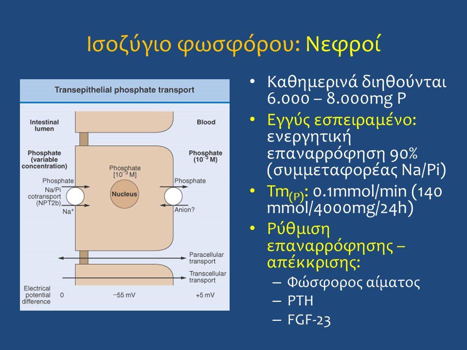 Ισοζύγιο φωσφόρου: Νεφροί Καθημερινά διηθούνται 6.000 – 8.000mg P Εγγύς εσπειραμένο: ενεργητική επαναρρόφηση 90% (συμμεταφορέας Na/Pi) Tm (P) : 0.1mmo