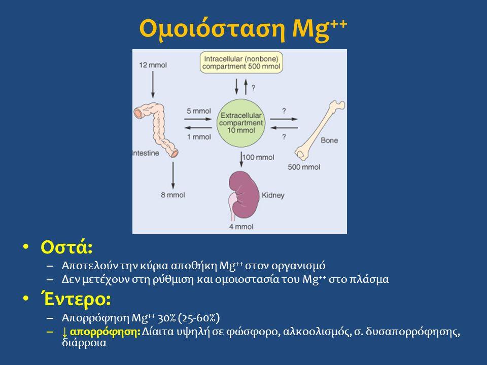 Ομοιόσταση Mg ++ Οστά: – Αποτελούν την κύρια αποθήκη Mg ++ στον οργανισμό – Δεν μετέχουν στη ρύθμιση και ομοιοστασία του Mg ++ στο πλάσμα Έντερο: – Aπορρόφηση Mg ++ 30% (25-60%) –↓ απορρόφηση: Δίαιτα υψηλή σε φώσφορο, αλκοολισμός, σ.