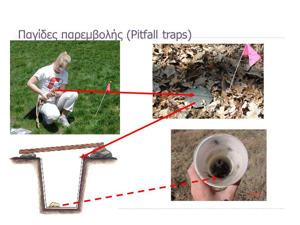Παγίδες παρεμβολής (Pitfall traps)