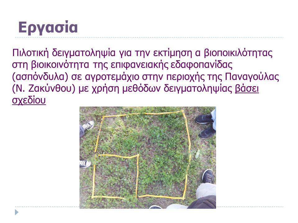 Εργασία Πιλοτική δειγματοληψία για την εκτίμηση α βιοποικιλότητας στη βιοικοινότητα της επιφανειακής εδαφοπανίδας (ασπόνδυλα) σε αγροτεμάχιο στην περιοχής της Παναγούλας (Ν.
