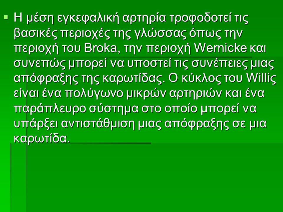  Η μέση εγκεφαλική αρτηρία τροφοδοτεί τις βασικές περιοχές της γλώσσας όπως την περιοχή του Broka, την περιοχή Wernicke και συνεπώς μπορεί να υποστεί