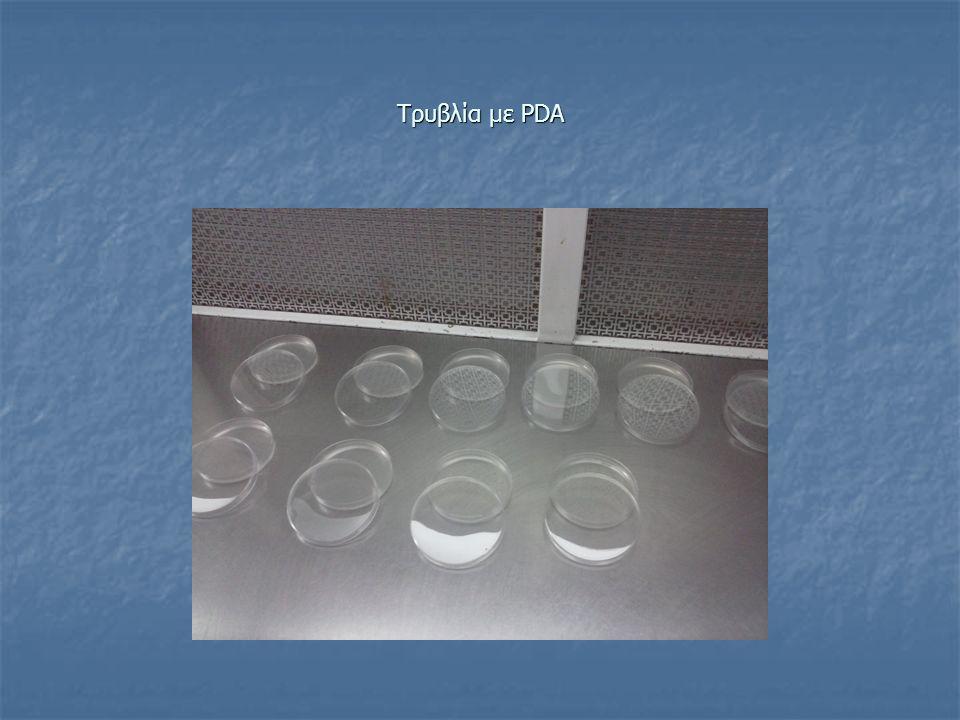 NAS Για 1L NAS χρησιμοποιούμε: - 8g Nutrient Broth - 50g sucrose - 20g Άγαρ Σε 1L απιονισμένο νερό.