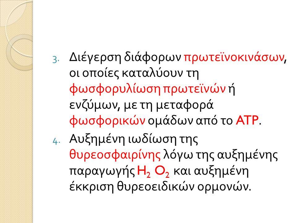 3. Διέγερση διάφορων πρωτεϊνοκινάσων, οι οποίες καταλύουν τη φωσφορυλίωση πρωτεϊνών ή ενζύμων, με τη μεταφορά φωσφορικών ομάδων από το ATP. 4. Αυξημέν